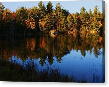 Reflection Canvas Print by Lois Lepisto