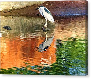 Canvas Print featuring the photograph Reflection Of A Bird by Kathy Tarochione