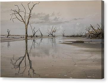 Reflection Of A Dead Tree Canvas Print by Jim Cook