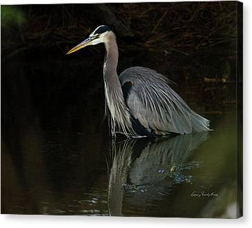 Reflection Of A Heron Canvas Print by George Randy Bass