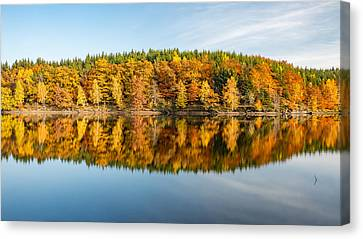 Reflection Of Autumn Canvas Print