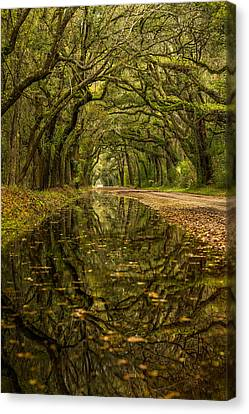 Reflection Of Live Oaks  Canvas Print by Serge Skiba