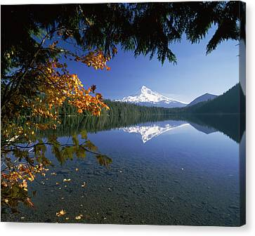 Reflection Of Mountain And Trees Canvas Print by Panoramic Images