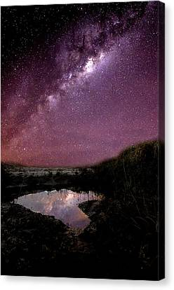 Reflection Of The Past Canvas Print by Fernando Beber
