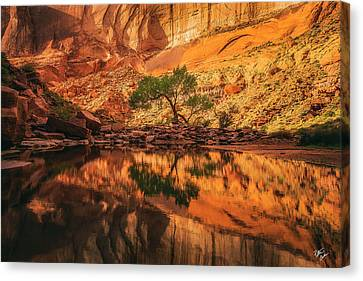 Canvas Print - Reflection Of Time by Peter Coskun