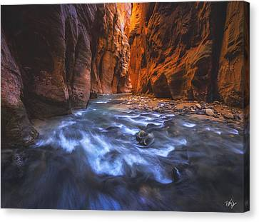 Canvas Print - Reflection by Peter Coskun