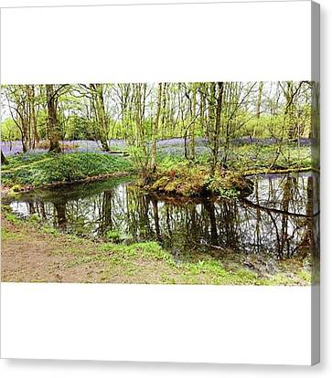 #reflection #water #bluebell Canvas Print by Natalie Anne
