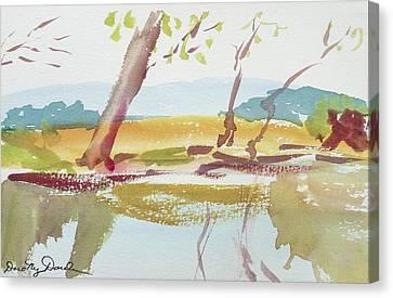 Quiet Stream Canvas Print