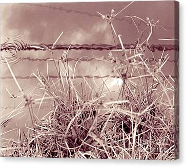 Canvas Print featuring the photograph Reflections 1 by Mukta Gupta