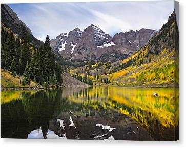 Reflections And Aspen Trees Canvas Print by Tim Reaves