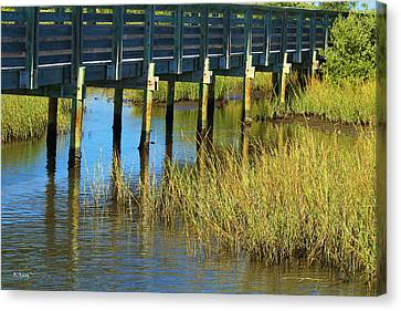 Reflections And Sea Grass Canvas Print by Roena King