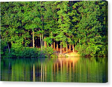 Reflections At Farrington Lake 6 Canvas Print by Aron Chervin