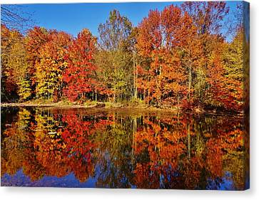 Canvas Print featuring the photograph Reflections In Autumn by Ed Sweeney