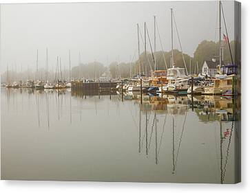 Reflections In The Fog Canvas Print by Karol Livote