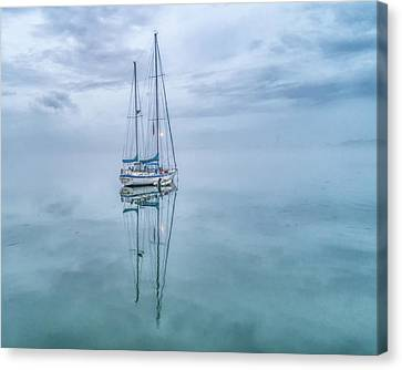 Reflections In The Fog Canvas Print