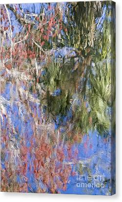 Reflections In The Hillsborough River Canvas Print by John Arnaldi