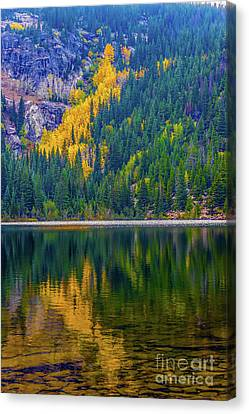 Reflections Canvas Print by Jon Burch Photography