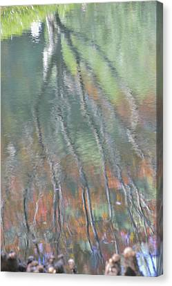 Reflections Canvas Print by Linda Geiger