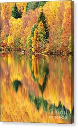 Reflections Loch Tummel Scotland Canvas Print by George Hodlin
