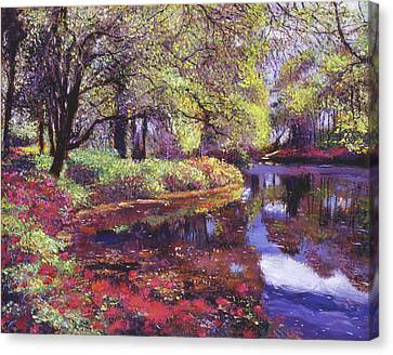 Reflections Of Azalea Blooms Canvas Print by David Lloyd Glover