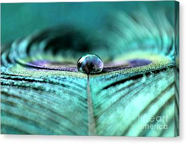 Reflections Of Clarity Canvas Print by Krissy Katsimbras