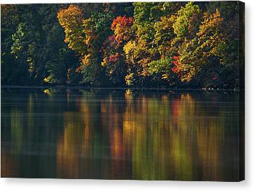 Reflections Of Colors Canvas Print by Karol Livote