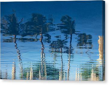 Reflections Of Hawaii Canvas Print