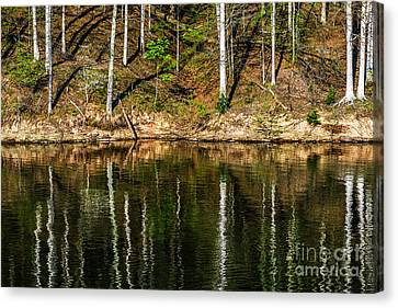 Reflections Of Spring Canvas Print by Thomas R Fletcher