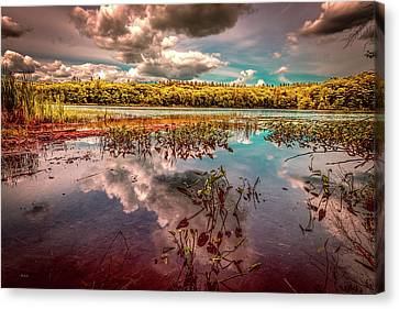 Canvas Print - Reflections Of Summer Past by Bob Orsillo