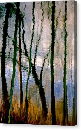 Reflections Of The Forrest Canvas Print by Gillis Cone