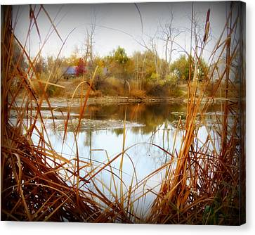 Reflections On A Pond -3 Canvas Print