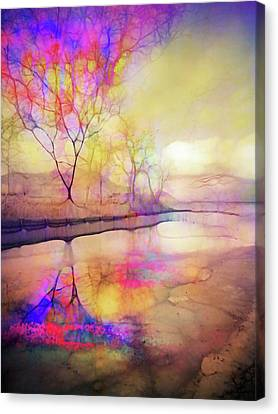 Reflections On Ice Canvas Print