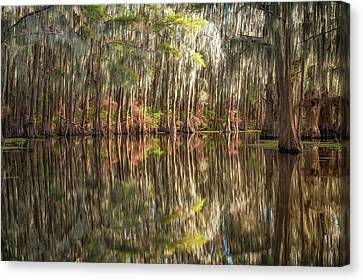 Reflections On The Bayou Canvas Print