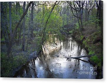 Canvas Print featuring the photograph Reflections On The Congaree Creek by Skip Willits