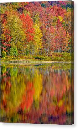 Canaan Valley West Virginia Reflections Canvas Print