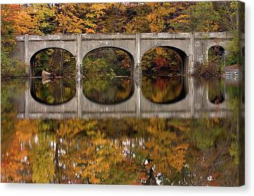 Reflections Canvas Print by Timothy McIntyre