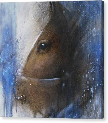 Reflective Horse Canvas Print by Jackie Flaten