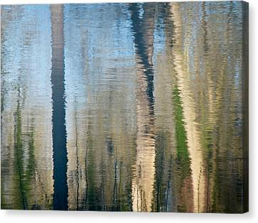 Canvas Print featuring the photograph Reflet Rhodanien Pastel 2 by Marc Philippe Joly