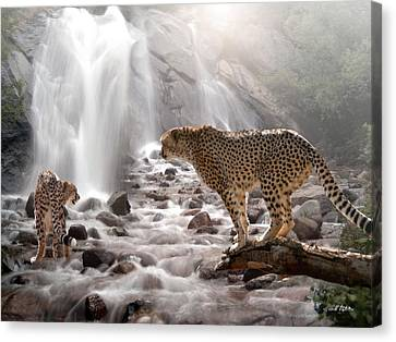 Refreshed Canvas Print by Bill Stephens