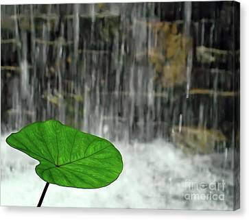 Canvas Print featuring the photograph Refreshed By The Waterfall by Sue Melvin