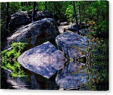 Refreshing Place On A Hot Day Canvas Print