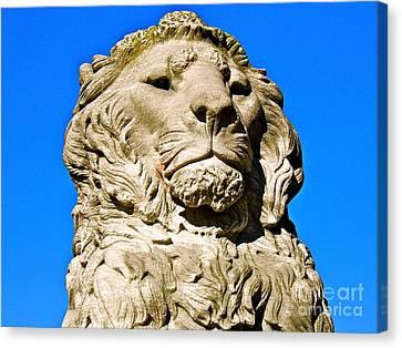 Regal Lion Canvas Print by E Robert Dee
