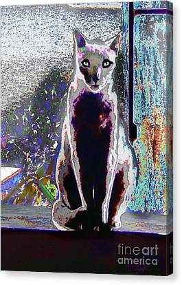 Regal Puss Canvas Print