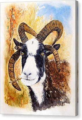 Reggie Canvas Print