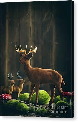 Mushroom Canvas Print - Reindeer by Amanda Elwell