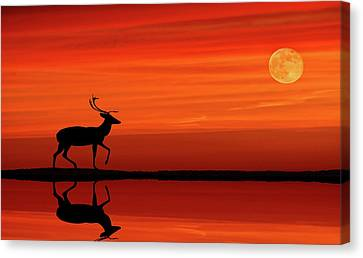 Canvas Print - Reindeer By Moonlight by Andrea Kollo