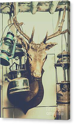 Reindeer With Old Lanterns Hanging On Horns Canvas Print