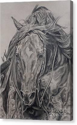 Slide Canvas Print - Reiner by Jana Goode