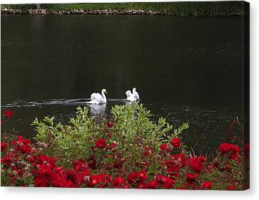 Relax Canvas Print by Ivete Basso Photography