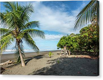 Jaco Canvas Print - Relaxation At The Beach by David Morefield